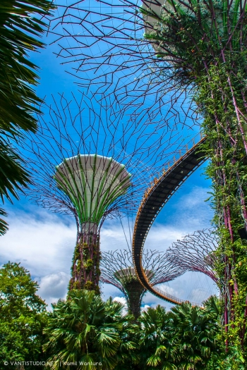 singapore-17