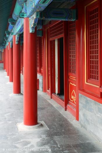 china_ (7)
